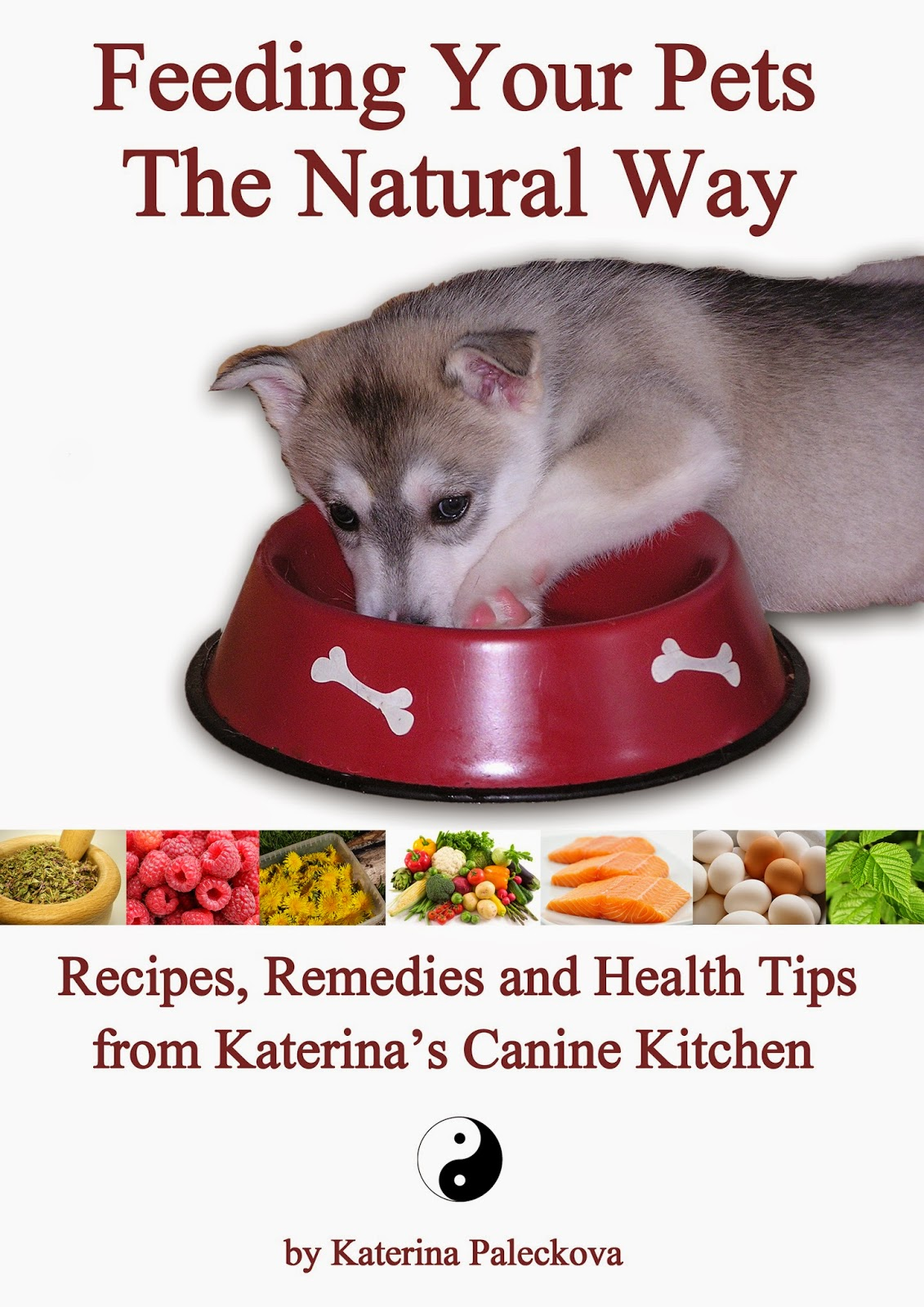Natural Way To Treat I S In Older Dogs