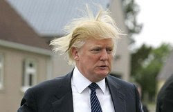Trump's hair stands on end