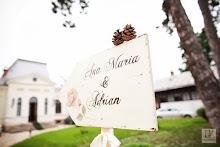 Sageti nunta - decoratiuni nunta Kofi