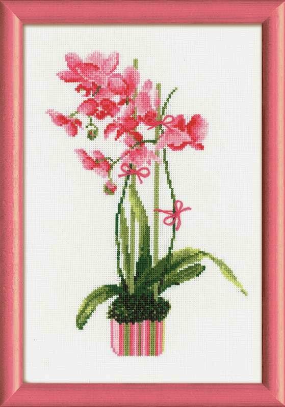 Скачать схема орхидея