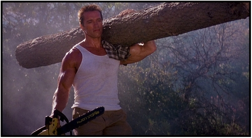 JE VIENS DE MATER UN DVD ! - Page 5 Commando+Arnold+Lumber