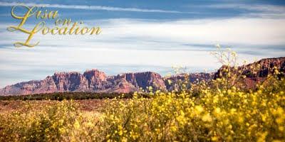 Kaibab plateau Grand Canyon north rim Arizona, New Braunfels photographer