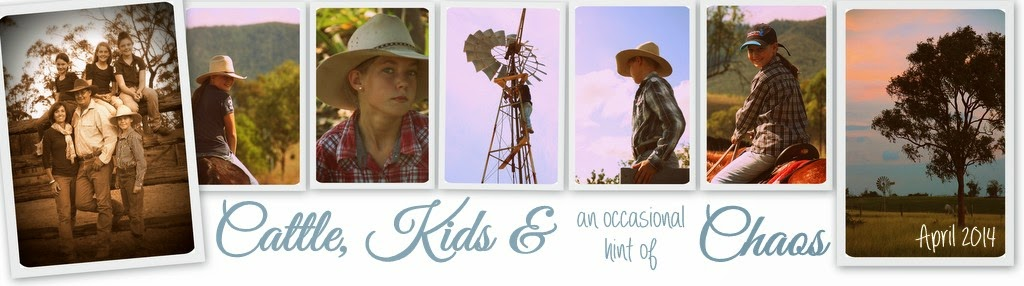 Cattle, Kids & Chaos