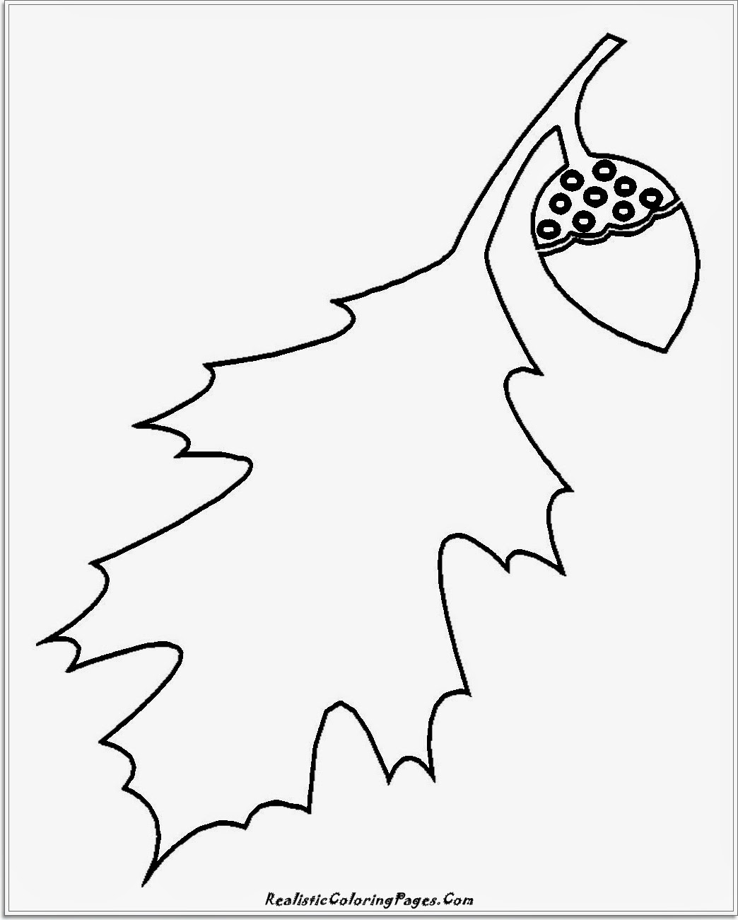simple leaf coloring pages for kindergarten kids