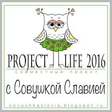 СОВМЕСТНЫЙ ПРОЕКТ PROJECT LIFE 2016