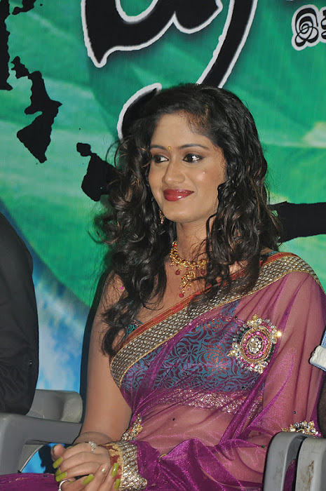 http://actress.cugiz.com/2012/01/lavanya-spicy-in-transparent-saree ...