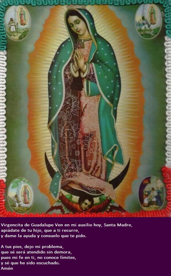 Virgen de Guadalupe protege a las personas por nacer.