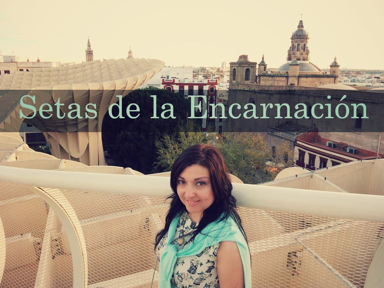 Setas-de-la-Encarnacion
