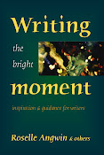 Writing the Bright Moment  inspiration &amp; guidance for writers