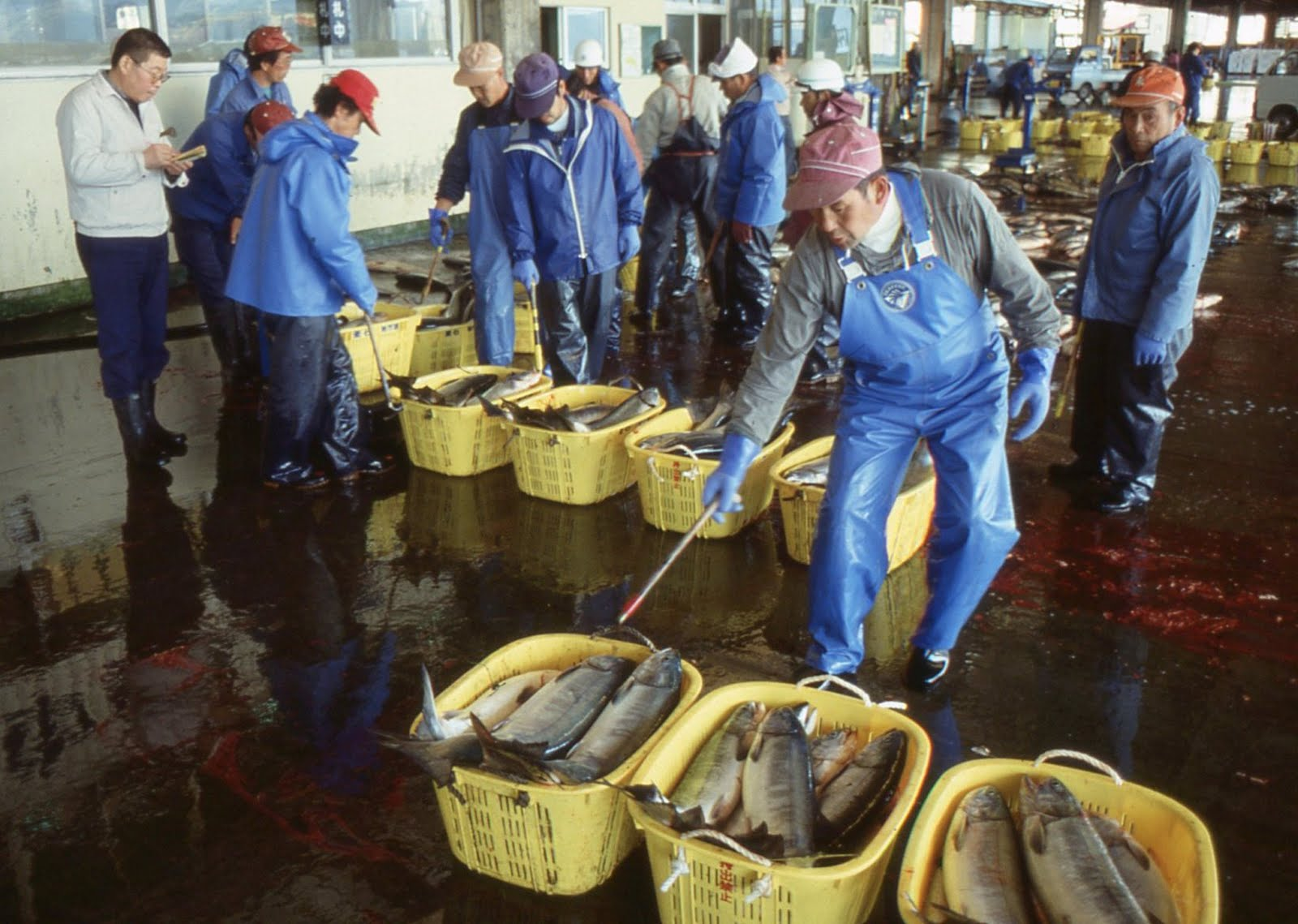 pacage marin pisciculture contre