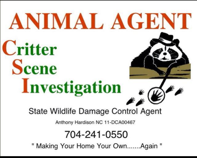 Animal Agent C.S.I.