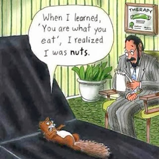 you are what you eat therapy session.  Squirrel talking to doctor saying when I learned that you are what you eat, I realized that I was nuts