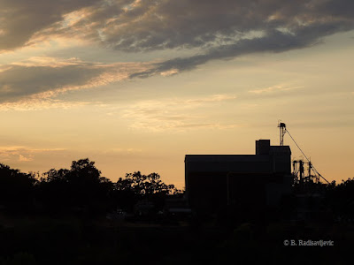 Templeton Feed and Grain Store at Sundown from East, © B. Radisavljevic