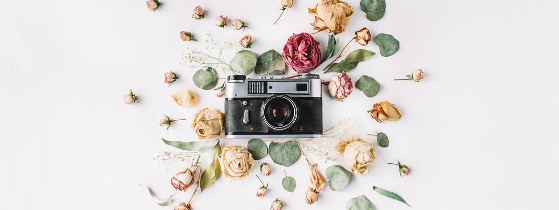Блог Анны Литвиновой