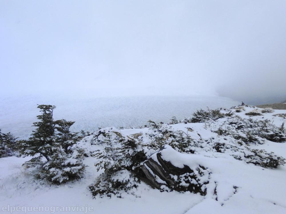 Campamento Pasos – Refugio Grey, Torres del Paine