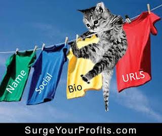 5 Mistakes Video Marketers Make http://surgeyourprofits.blogspot.com