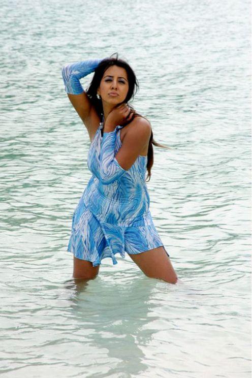 Wet south indian actress pics
