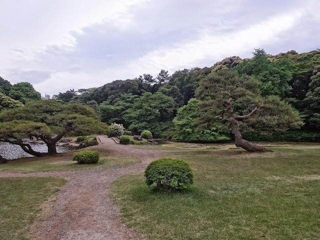 庭園,新宿御苑〈著作権フリー無料画像〉Free Stock Photos
