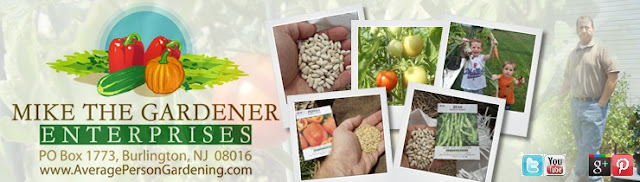 mike the gardener enterprises urban gardening seed of the month backyard greenhouse