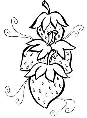 Para Ampliar Ou Imprimir Os Desenhos Dos Morangos   Clique No Desenho