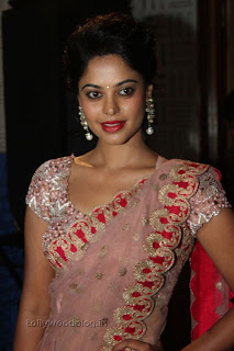 Actress Bindu Madhavi Saree Picture Stills 010.jpg