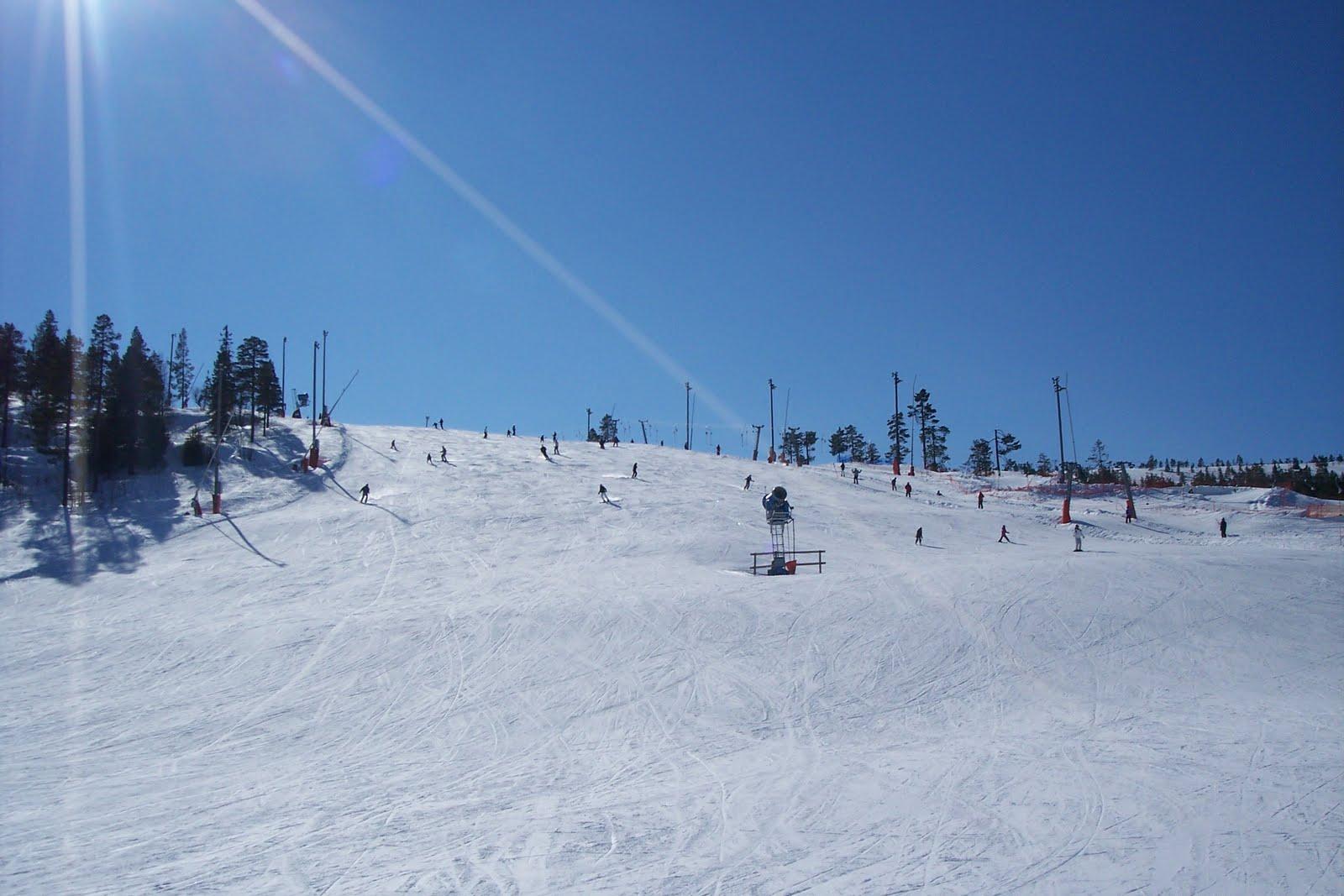 Åka skidor gravid