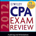 Ebook Wiley CPA Exams Review 2012 - Auditing and Attestation by Whittington