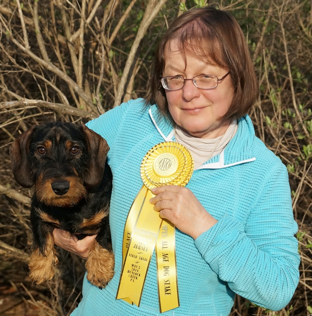 BORN-TO-TRACK BLOG: Great weekend at dachshund field trials in ...