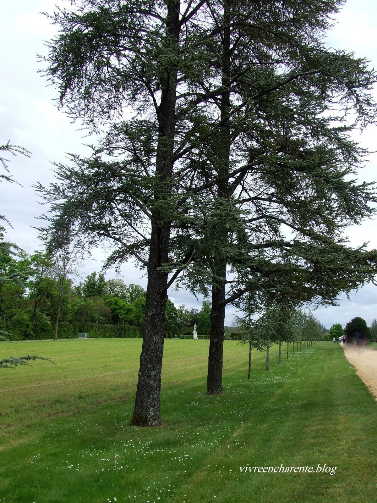 Verteuil sur charente floralies for Parc expo angouleme