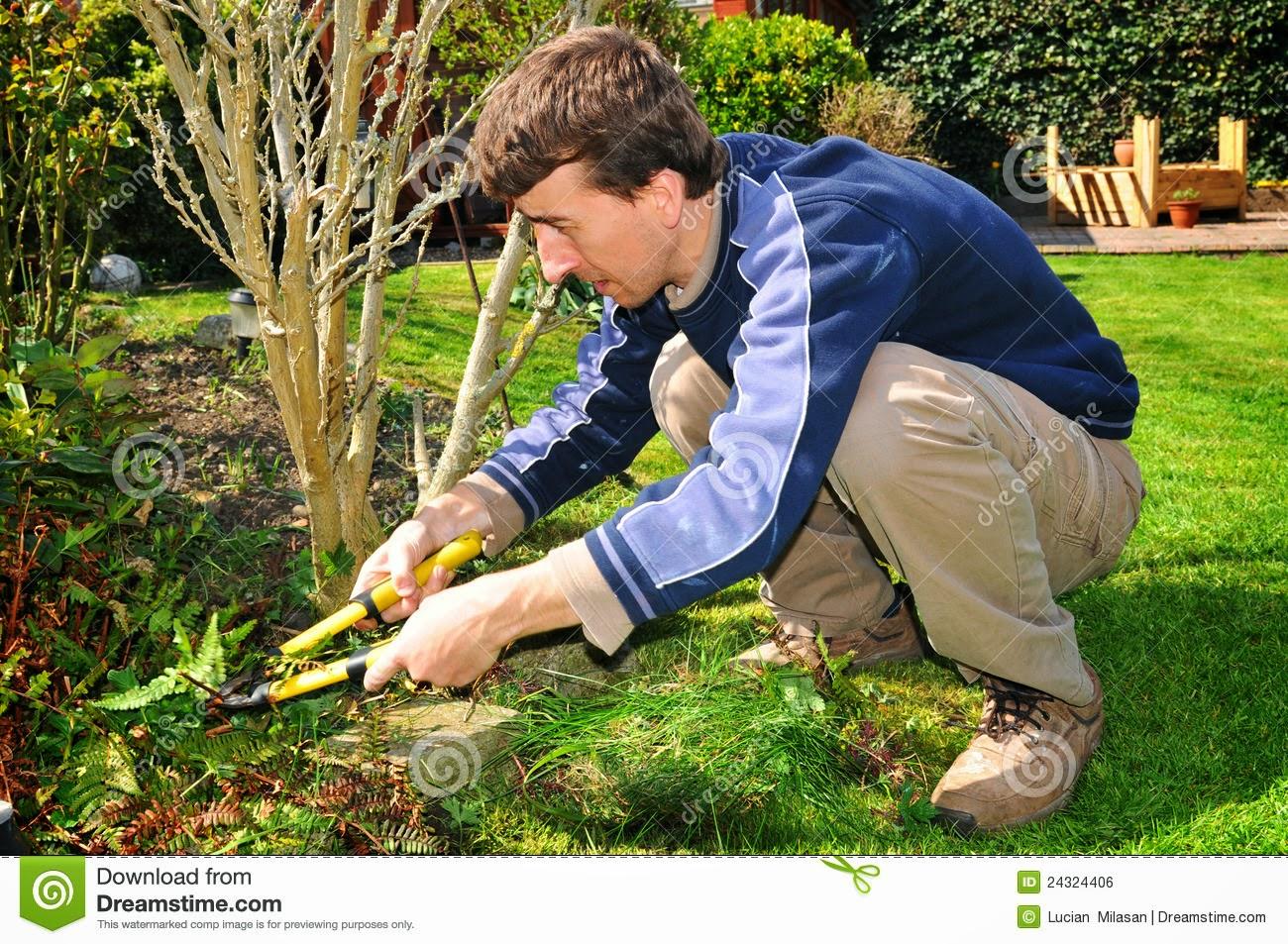 Gardener Royalty Free image