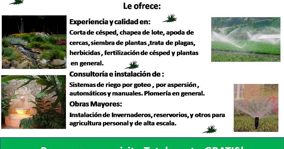 Servicios de jardiner a nosotros for Servicio de jardineria