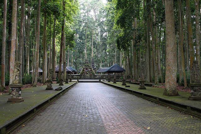 Objek wisata Sangeh Bali 3