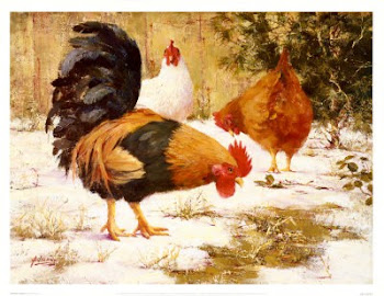 Chickens