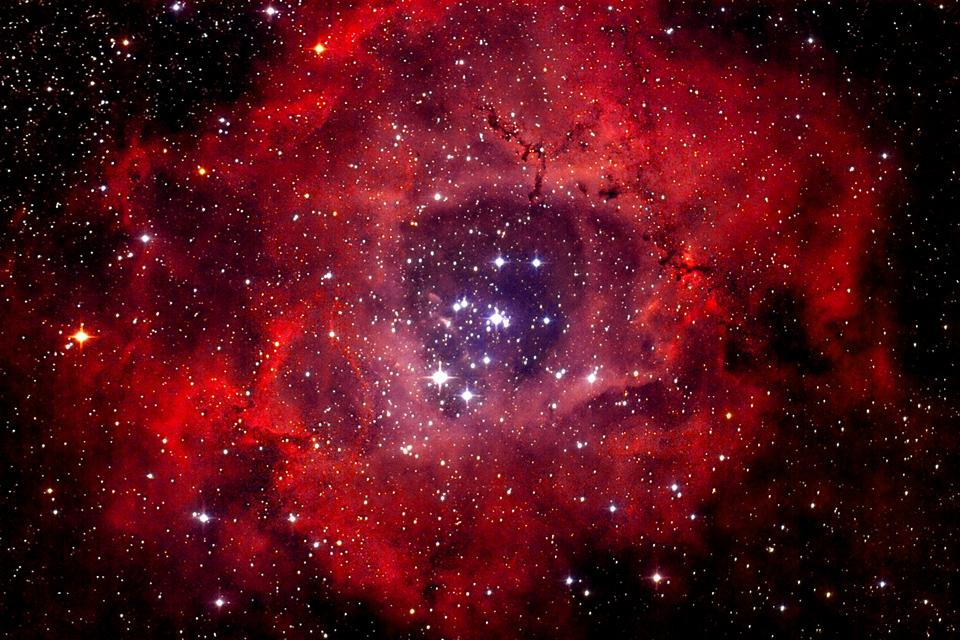Cụm sao NGC 2244 và Tinh vân Bông hồng. Tác giả : Andreas Fink.