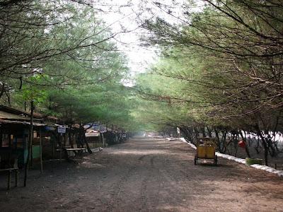 Kawasan Pantai Kuwaru di Bantul, Yogyakarta