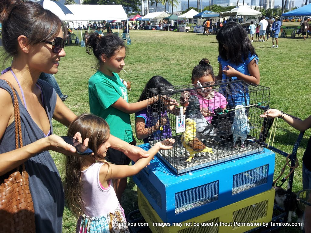 2011 aloha pet festival for Waimanalo feed supply