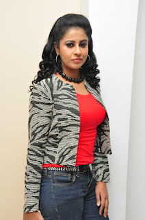 Anjana Pictures in Denim Jeans at Red Alert Audio Release Function  252814).JPG