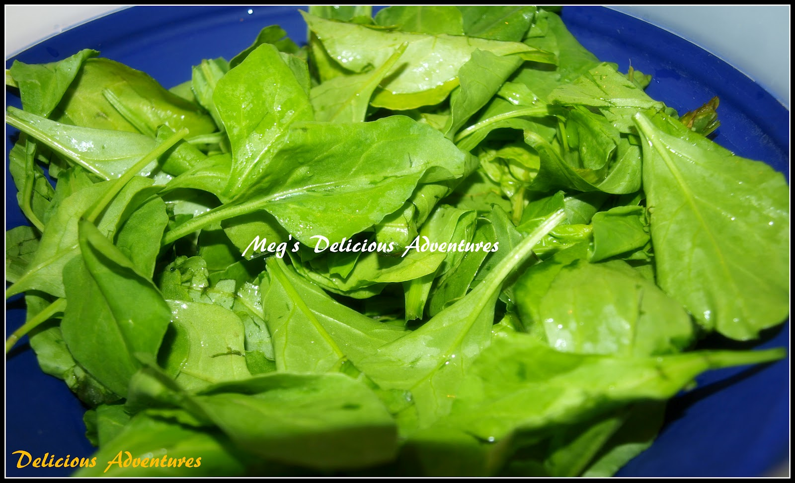 Meg S Delicious Adventures Palak Paneer Spinach With