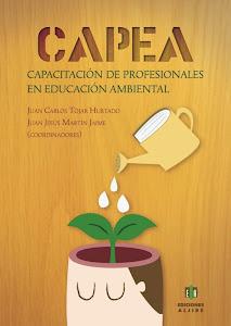 Libro CAPEA 2013