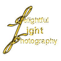 Delightful Light Photography