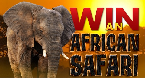 African Safari sweepstakes