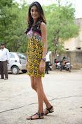 Erika Fernandez Glam pics-thumbnail-15