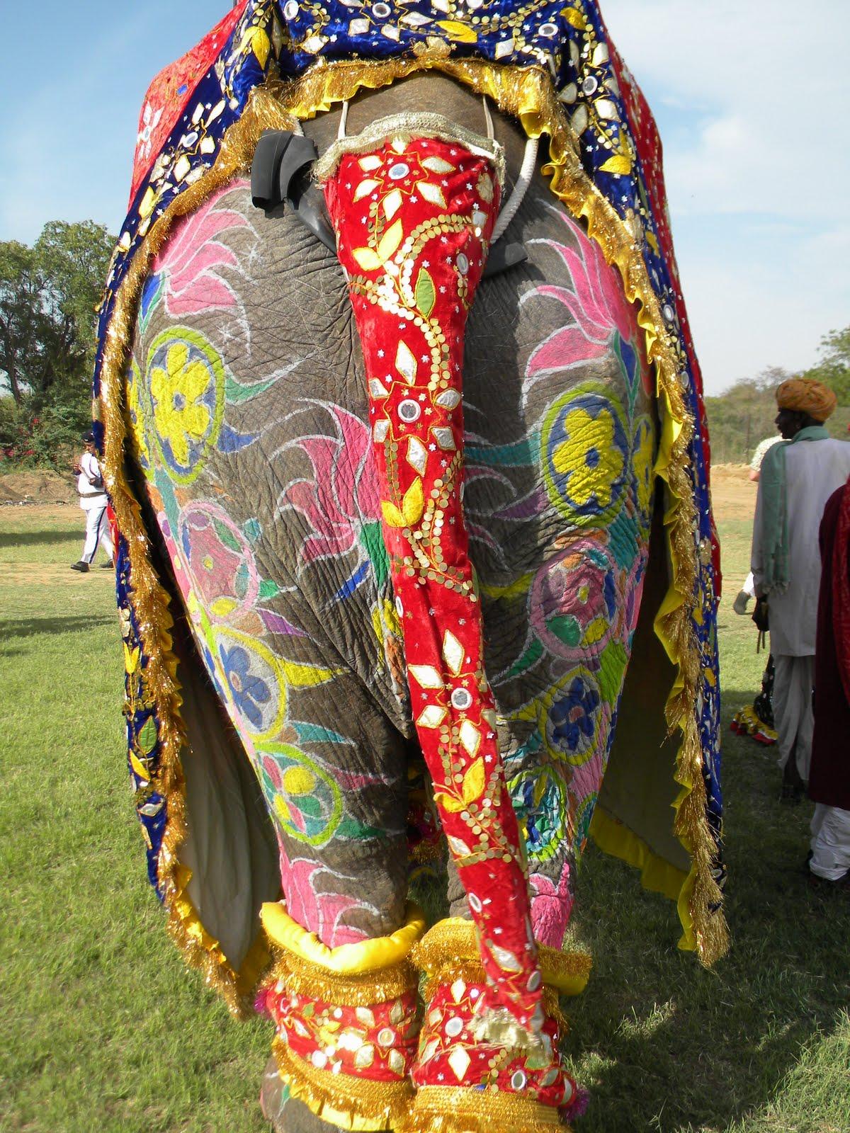 el blog del espiritu viajero  festival de los elefantes