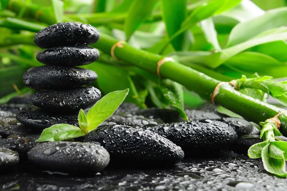 Przypowieści zen