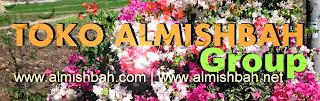 www.almishbah.net