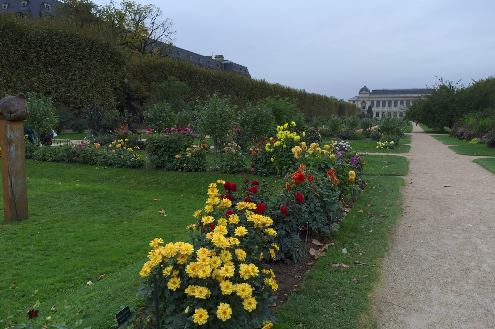 Jardin de plantes Paris with flowers.
