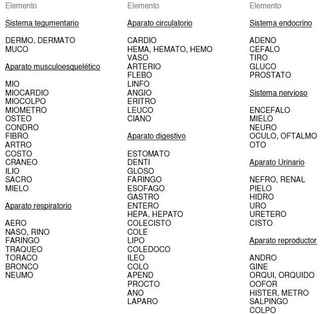 InfoTcae: Terminología Medica