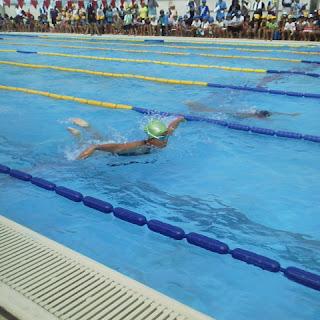水泳大会決勝 : 三年生の算数 : 算数