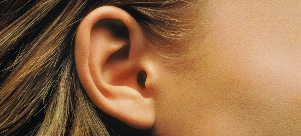 The Science of Hearing - How Do Our Brains Process What We Hear?