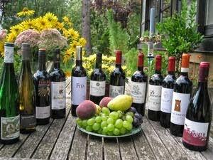 12 Flaschen Wein aus den  Mövenpick Weinkellern